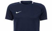 Camiseta Masculina Nike Dry